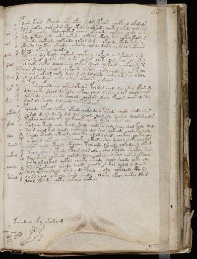 800px-voynich_manuscript_2811929
