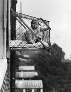gallery-1435078293-baby-cages-2-de