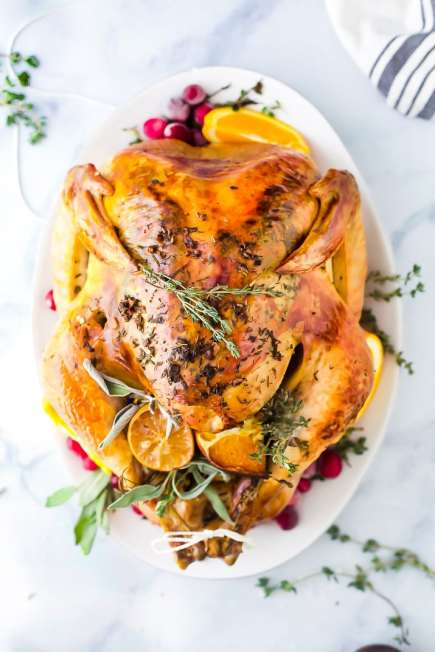 the-best-thanksgiving-turkey-recipe-without-brining-web-12