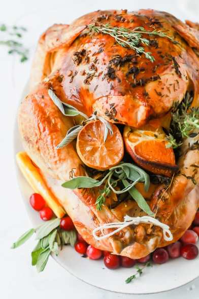 the-best-thanksgiving-turkey-recipe-without-brining-web-15