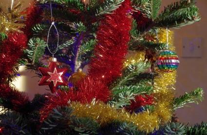 wraxall_2014_mmb_07_christmas_tree